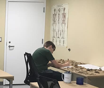 Student working in a lab with animal bones