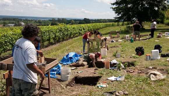 Archaeologists digging on the edge of a field
